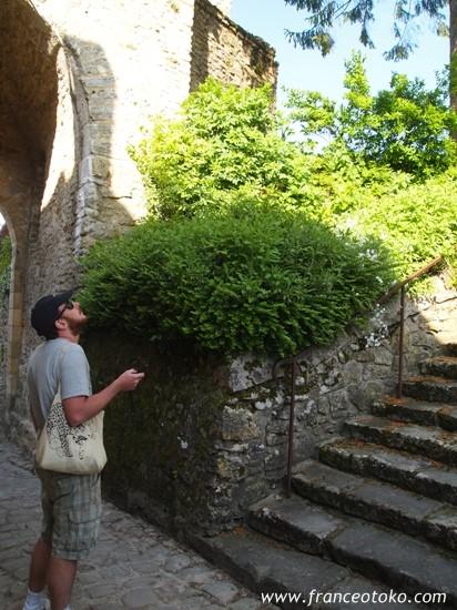フランス・ノルマンディ旅行、観光、フランス男、ノルマンディのブログ