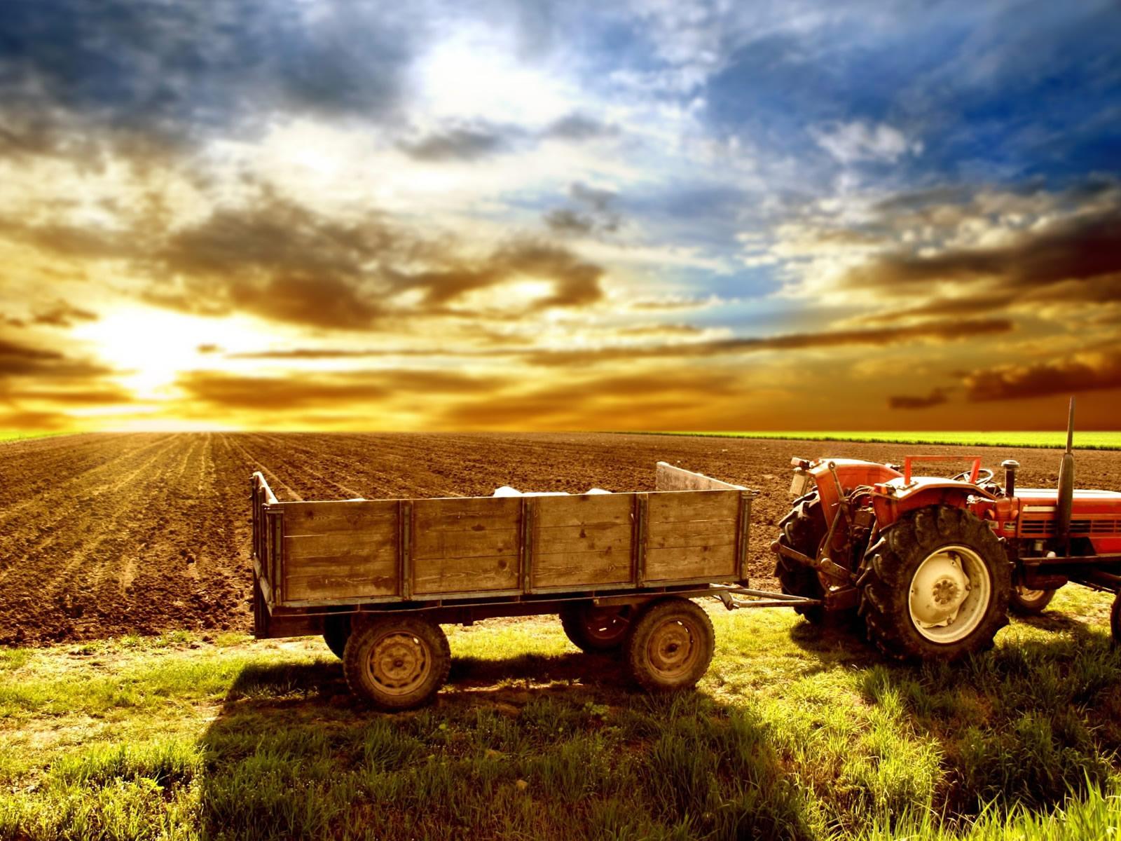 http://4.bp.blogspot.com/-kiFIW2Fdd8s/TpLBJsXribI/AAAAAAAAAHQ/MvjuvLfFiuA/s1600/farm_wallpaper.jpg