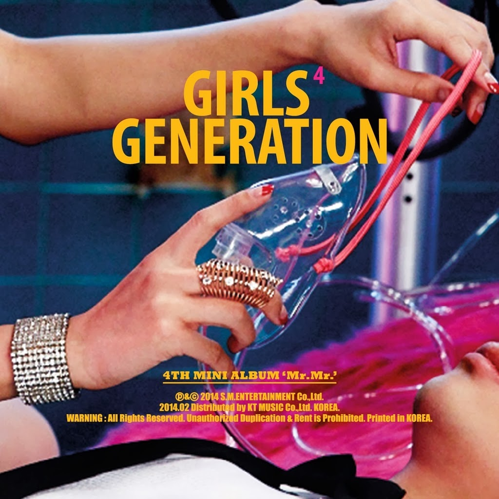SNSD Girls Generation Mr.Mr. lyrics cover