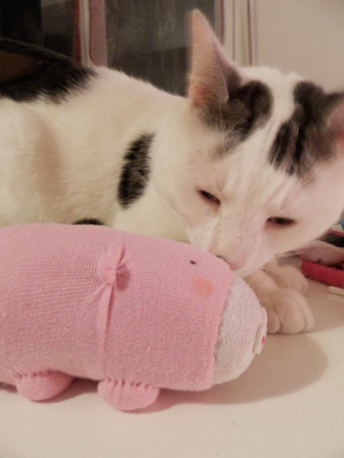 Coton et Création : Cochon en chaussette