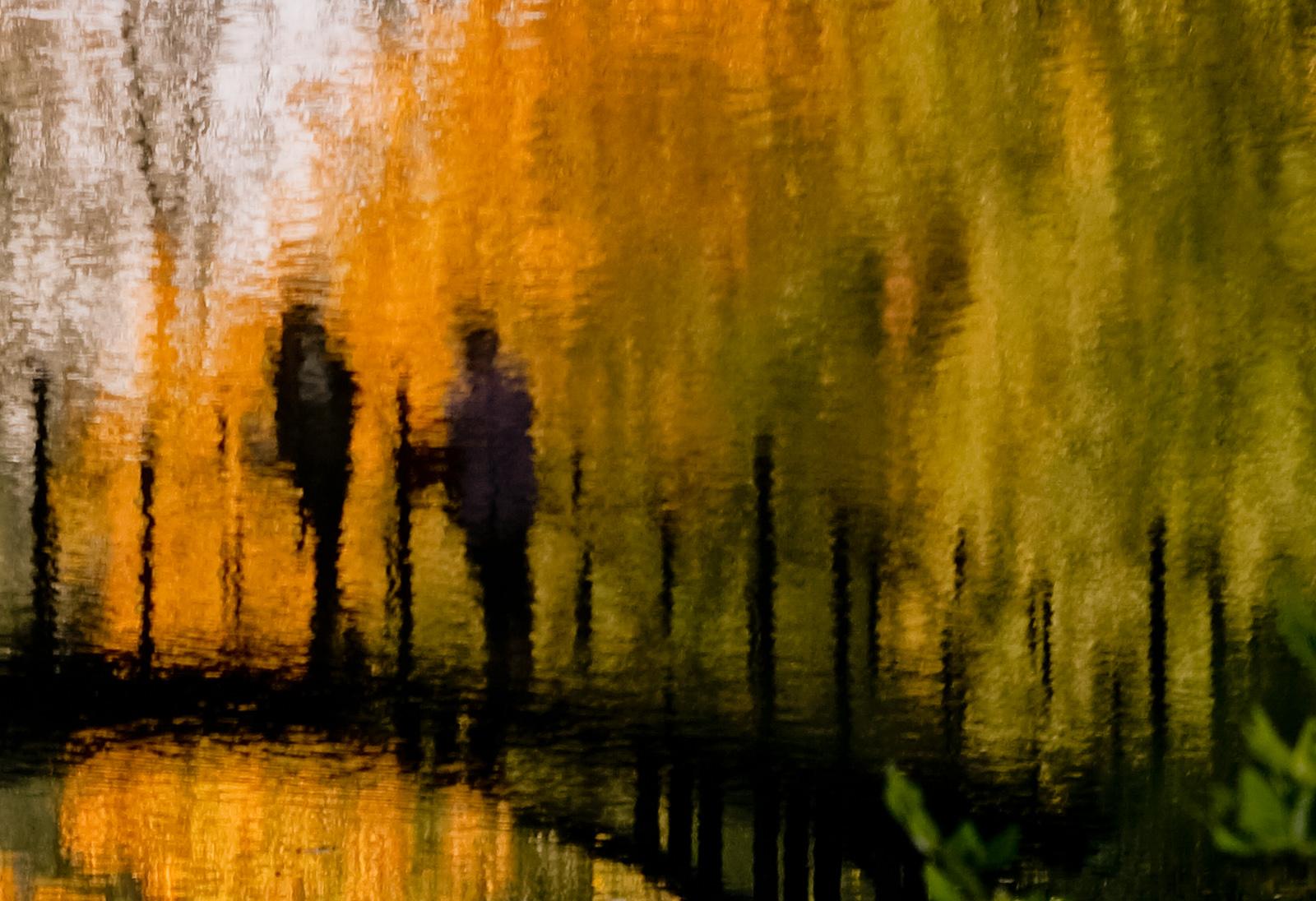 Park pałacowy w Pszczynie. Pejzaż jesienny. fot. Łukasz Cyrus
