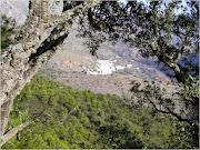 Alcornocal de Lùjar