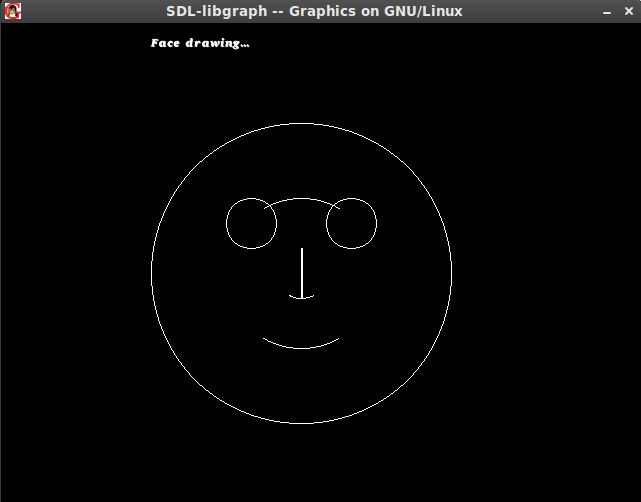 Face drawing - graphics programming in linux - c++ program