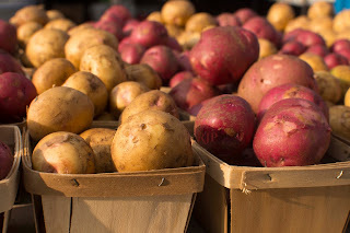 Potato Reed