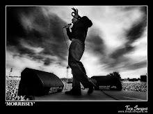 Mi amor, Morrissey