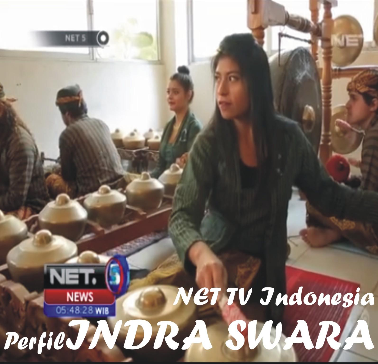perfil INDRA SWARA