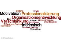 Organisationsentwicklung Vergütungssystematik Bosch Dotzauer