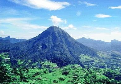 Tempat Wisata di Medan Taman Nasional Gunung Leuser