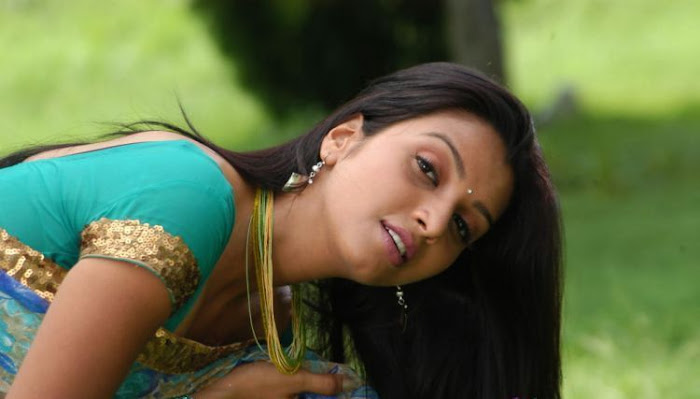 madhulika in saree glamour  images