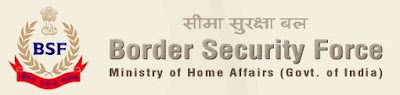 BSF Sub Inspector Recruitment 2013