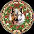 Ένας λύκος γιορταστικός!