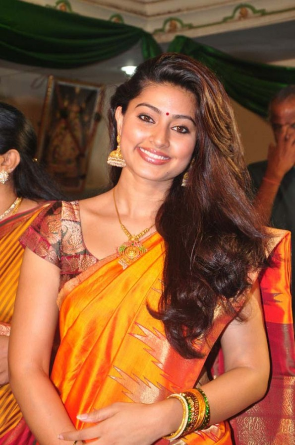 Alfuns Com Tamil Actress Sneha In Traditional Silk Saree