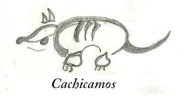 Grupo Cachicamos