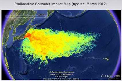Fukushima Radiation Leaks