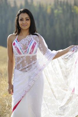 Trisha embroidery sari