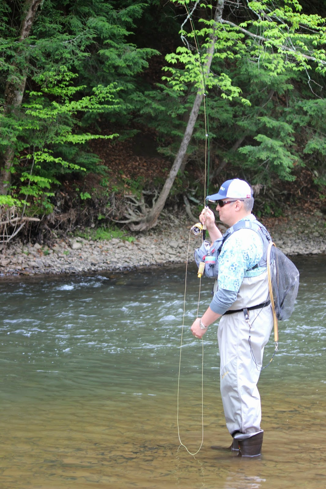 Wny fly fishing wny fly fishing trout camp stream for Trouts fly fishing reports