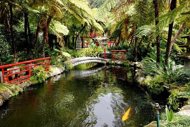 Home Garden Ideas: Tropical Garden Design For A Rejuvenating
