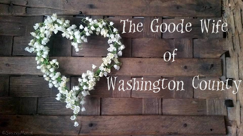 The Goode Wife of Washington County