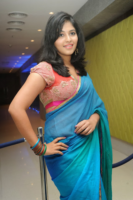 Actress Anjali Hot Saree Photos