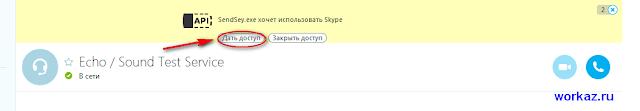 Заработок в скайпе с программой sendsay