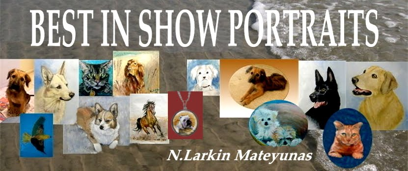 Best In Show Portraits