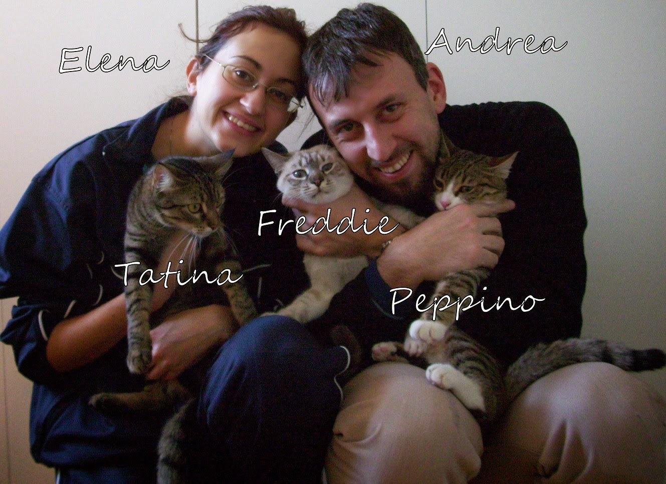 Foto che ritrae mia moglie e i miei tre gatti e me
