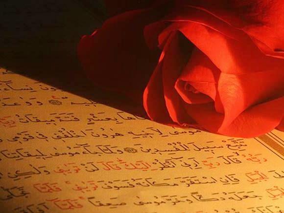 Hoşgörü ile ilgili ayet ve hadisler