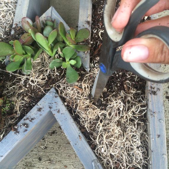 Jardines verticales con letras y suculentas jardines Jardines verticales baratos