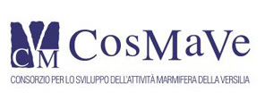 Cosmave - Pietrasanta (Lu) Toscana Italia