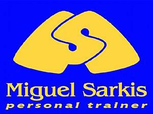 Miguel Sarkis