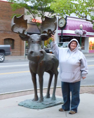 Coeur d'Alene me and moose