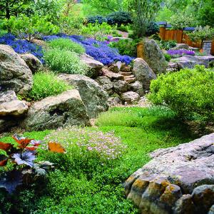 Rock Garden Designs Rock Garden Designs Simple but Elegant