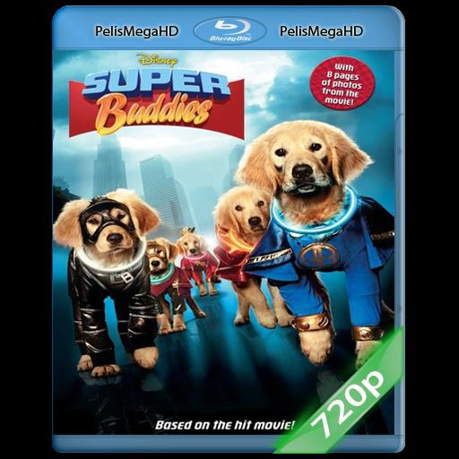 SUPER BUDDIES (2013) 720P HD MKV ESPAÑOL LATINO