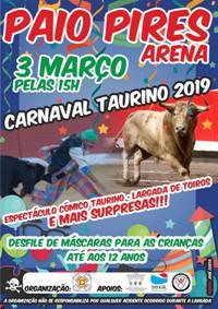 Paio Pires (Seixal)- Carnaval Taurino 2019