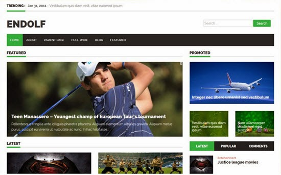 Endolf WordPress Theme