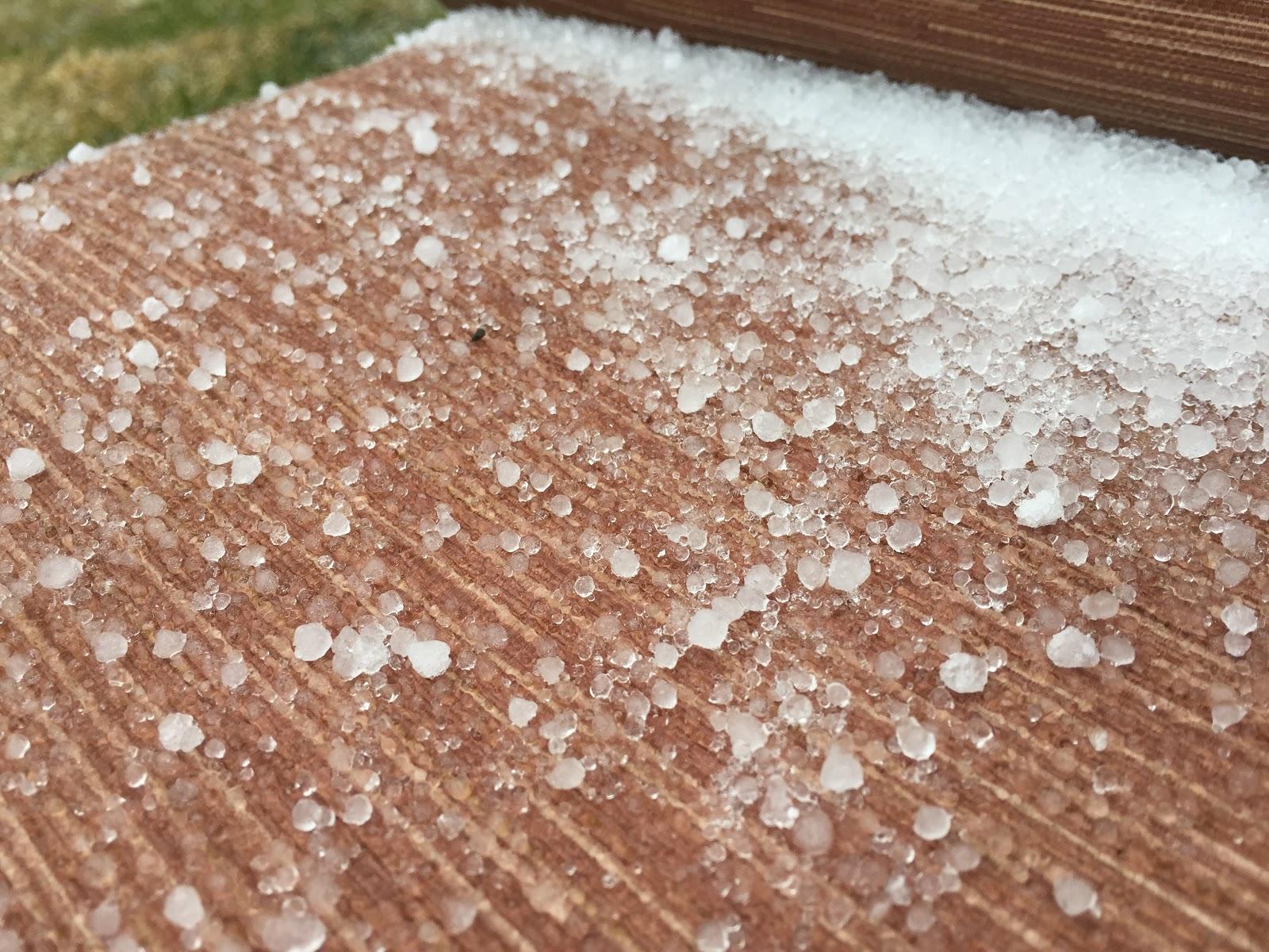 frozen rain balls