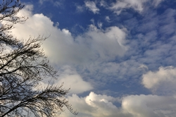 Einfache Wolkenaufnahme...
