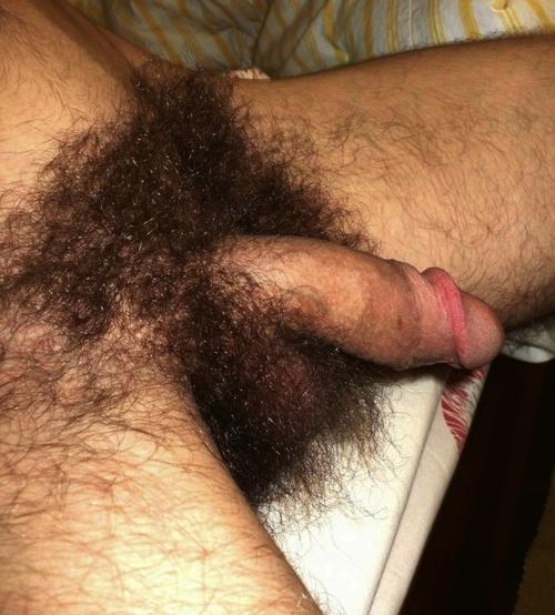 Homens com paus enormes big dotados rolas grandes pau duro (7)