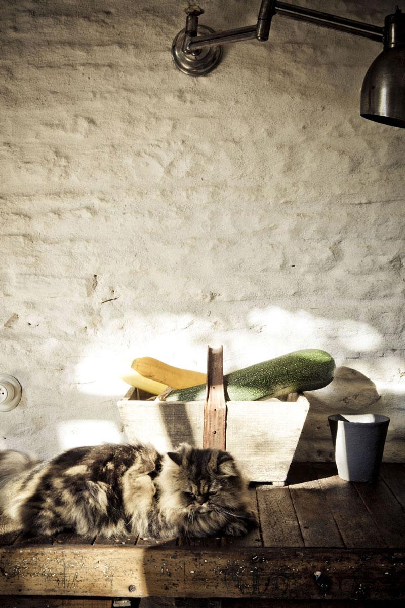 casa de verano de los editores de Milk Magazine