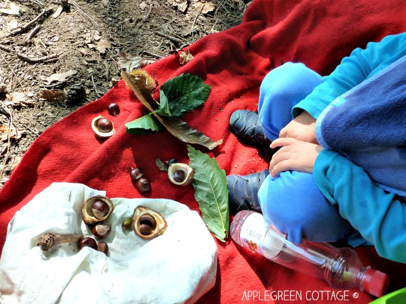 Applegreen Cottage - fall scavenger hunt