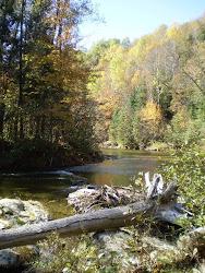 Au tournant de la Rivière