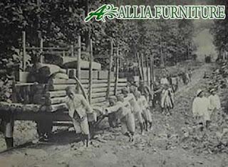 pengambilan kayu jaman dulu