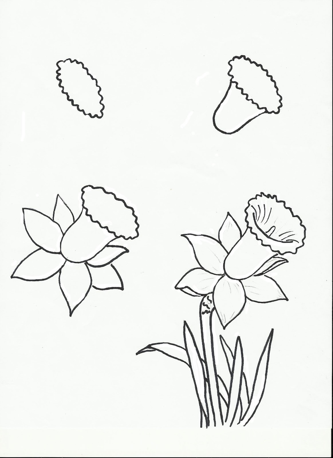 Filled with skill for Step by step instructions on how to draw a flower