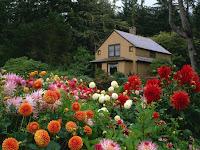 foto de casa con enorme jardin lleno de flores