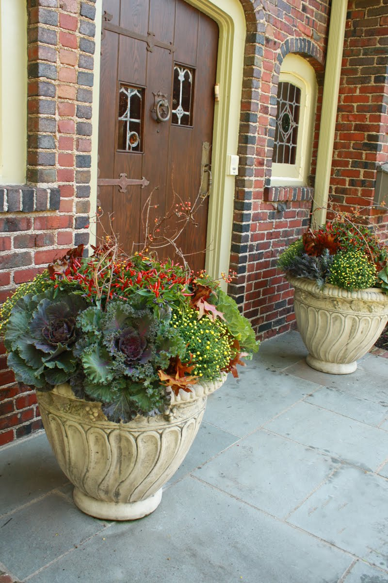 flores del sol fall container plantings