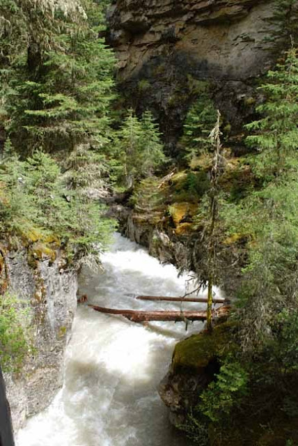 Artwife needs a life hiking johnston canyon banff for Johnston canyon cabins