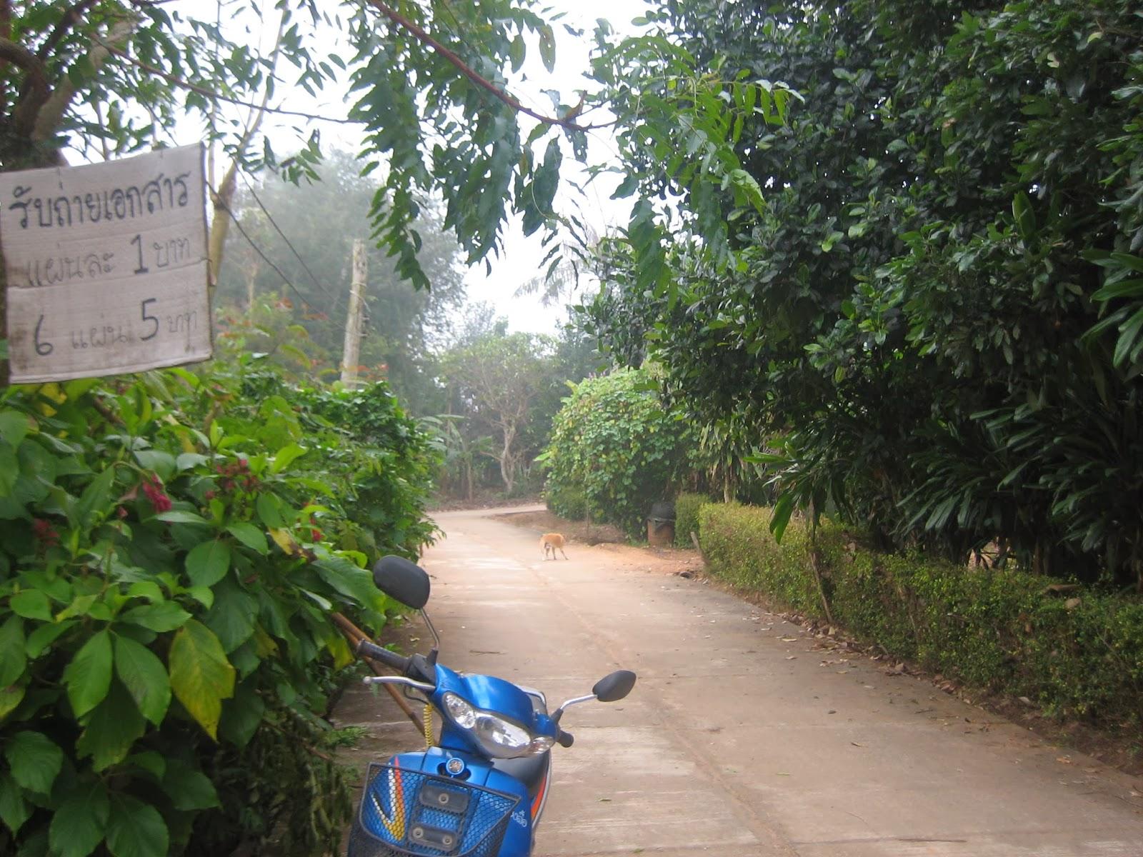 rural-north-thailand-samoeng