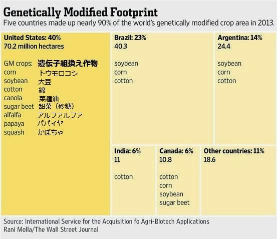 遺伝子組み換え作物 アメリカ ブラジル アルゼンチン 中国 インド カナダ