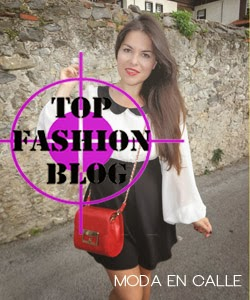 top fashion blog