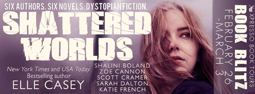 Book Blitz:  Shattered Worlds Boxed Set
